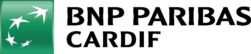 BNP2.png